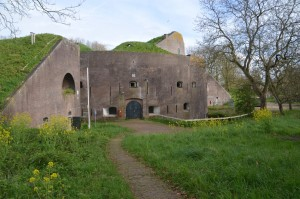 Fort Everdingen Elfenboom